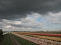 Donkere wolken boven Lisse